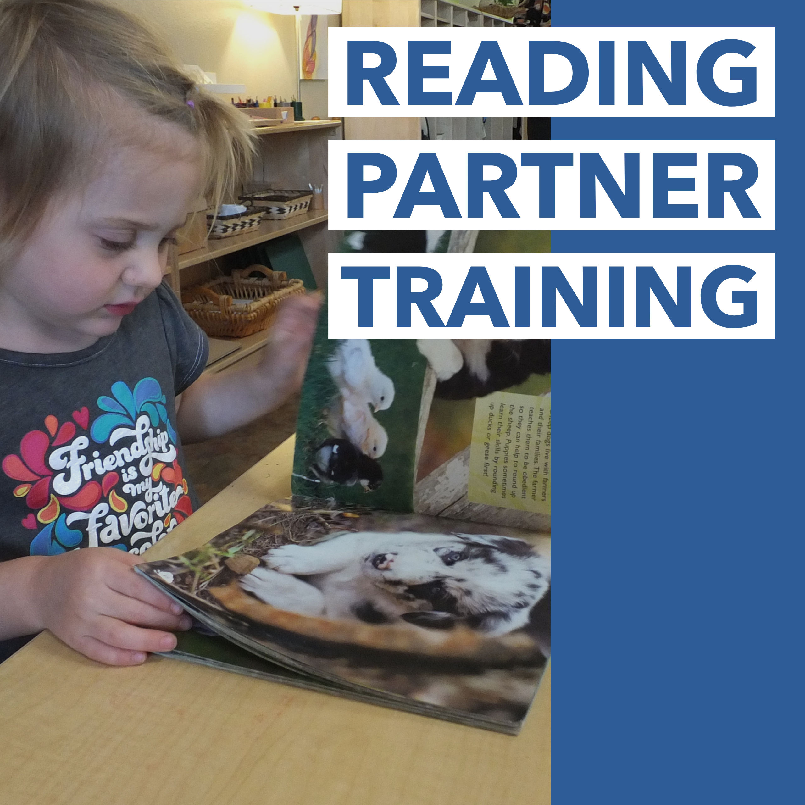 Reading Partner Training